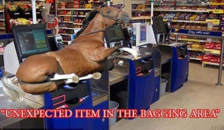 Tesco checkout horsemeat joke pic